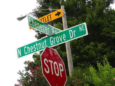 Chestnut Grove Marietta Home Neighborhood (12)