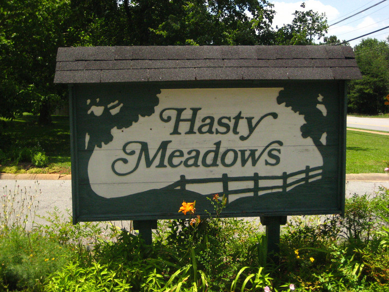 Hasty Meadows-Marietta Neighborhood (4)
