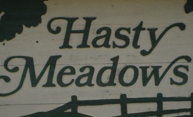 Hasty Meadows-Marietta Neighborhood (2)
