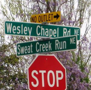 Highlands At Wesley Chapel-Marietta (17)