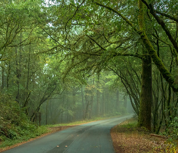 Blues, Greens, Road