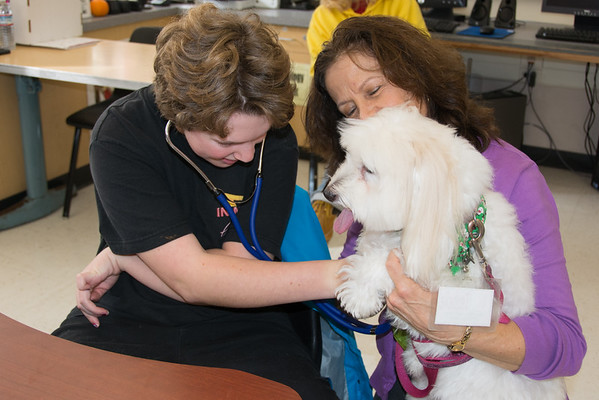 Terra Linda - Pet First Aid Class Dec 2014