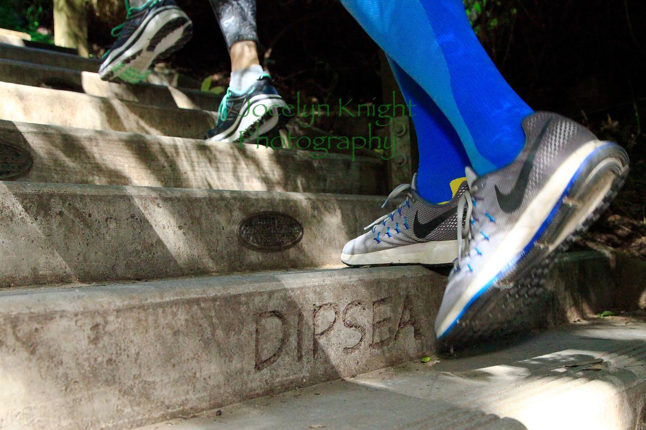 MIJ-L-DIPSEA-0612-08