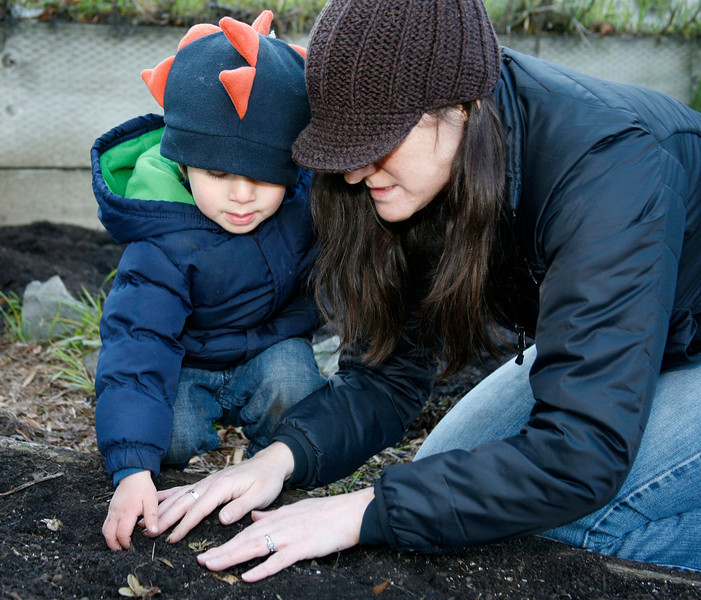 2 1/2 years old Salvador Razatos and his mother Ami Ehrich plant lettuce as part of a volunteer work crew during Martin Luther King Day at the community garden on Cole Drive in Marin City, Calif. on Monday, January 16, 2012.  (Special to the IJ/James Cacciatore Photo)