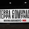 Marina Abramovic's Experience