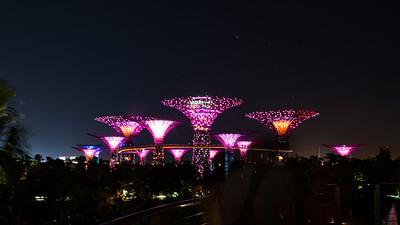 Marina Bay Sands & Marina Bay Gardens - Singapore