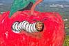 Mia apple worm 2 - 2014-10-04