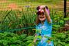 Mia picks a strawberry - 2016-05-29