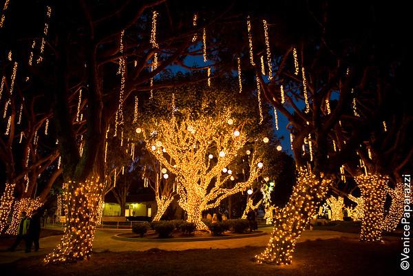 12.01.18 Marina Lights event photos
