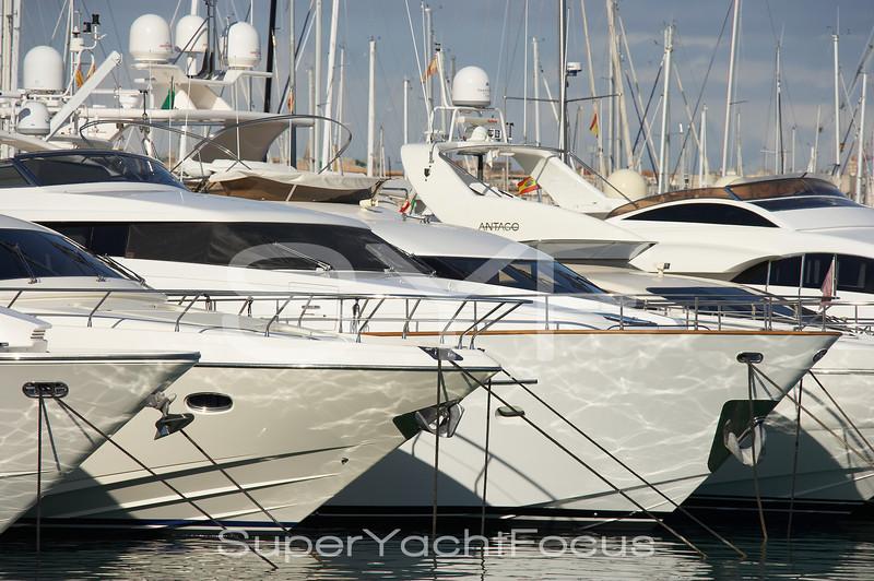 Motoryachts in marina