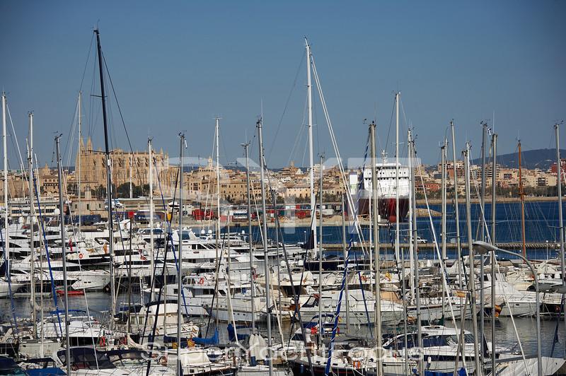 Mallorca, Club de Mar with cathedral