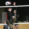 - Marine City hosted Warren Woods Tower Volleyball. October 11, 2016  (MIPrepzone photo gallery by David Angell)
