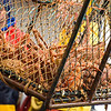 Lobster Fishing aboard the Aleutian Ballad