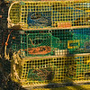 "Lobster Traps (""pots"")"