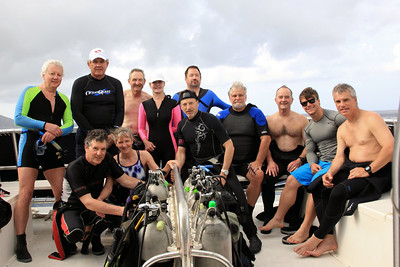 The Dom Dive Group