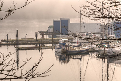 Marina In The Fog - Genoa Bay, Cowichan Valley, Vancouver Island, British Columbia, Canada