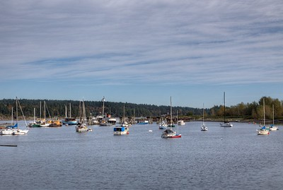 """Marine Scenery - Ladysmith Marina, Ladysmith, Vancouver Island, BC, Canada Visit our blog """"A Day At The Beach"""" for the story behind the photo."""