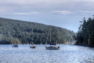 Maple Bay - Cowichan Valley, Vancouver Island, British Columbia, Canada