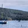Maple Bay - Cowichan Valley, Vancouver Island, British Columbia, Canada