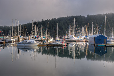 Early Morning - Maple Bay Marina, Vancouver Island, British Columbia, Canada
