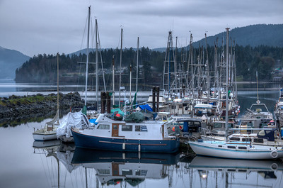 "Coastal Scenes - Crofton, Vancouver Island, BC, Canada Visit our blog ""On Gossamer Wings"" for the story behind the photo."