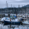 """Coastal Scenes - Crofton, Vancouver Island, BC, Canada Visit our blog """"<a href=""""http://toadhollowphoto.com/2015/01/13/wedding-photography-on-gossamer-wings/"""">On Gossamer Wings</a>"""" for the story behind the photo."""