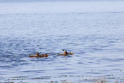 Kayaks and Ocean - Victoria, Vancouver Island, BC, Canada
