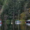 Anchored Boats - Sooke, Vancouver Island, British Columbia, Canada