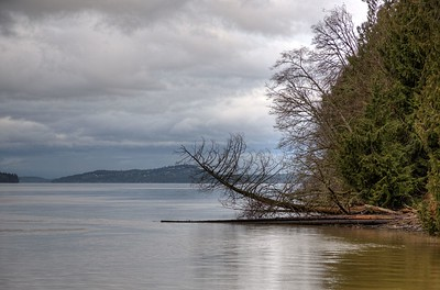"""Ocean Scene - Cowichan Valley Region, Vancouver Island, BC, Canada Visit our blog """"Sweet Desolation"""" for the story behind the photo."""