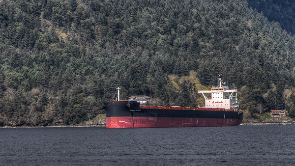 Shipping Freighters - Cowichan Valley, Vancouver Island, British Columbia, Canada
