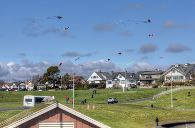 Flying Kites In Spring - Victoria Oceanfront - Victoria, Vancouver Island, British Columbia, Canada