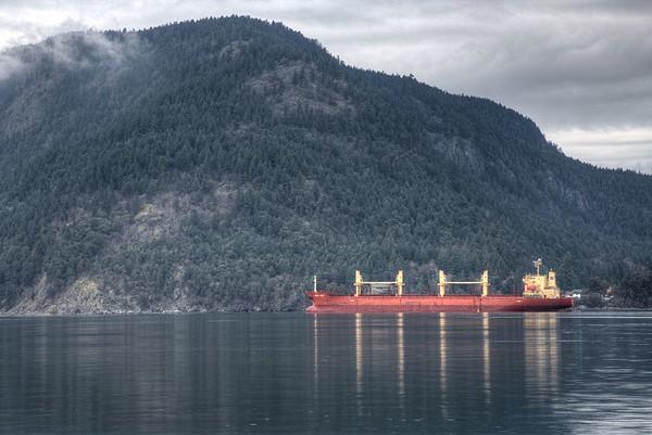 Marine Seascape - Genoa Bay, Vancouver Island, BC, Canada
