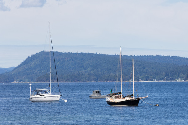 Anchored Boats - Chemainus Oceanscape, Vancouver Island, British Columbia, Canada