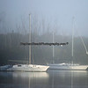 Sailboats moored  on a foggy morning in Estero Bay.