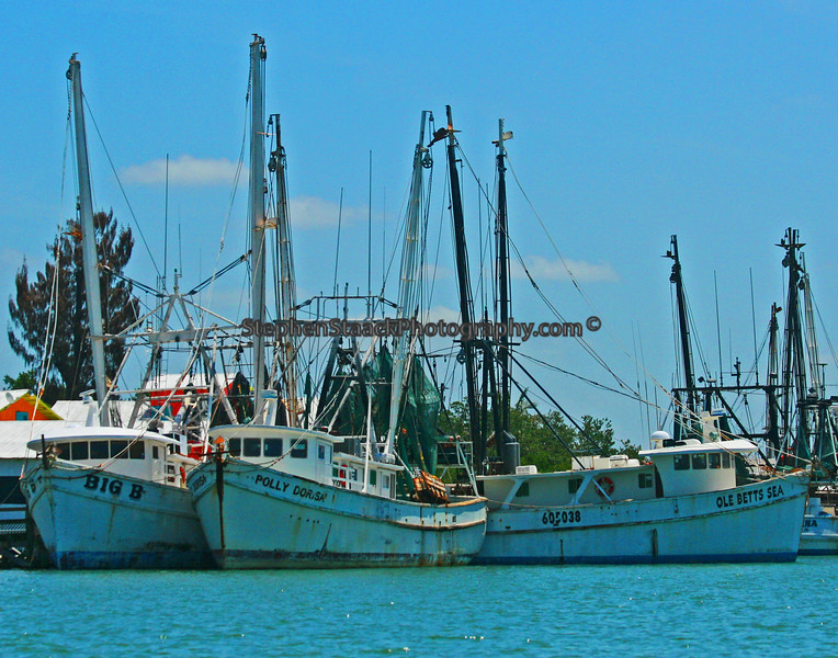 shrimp boats in harbor