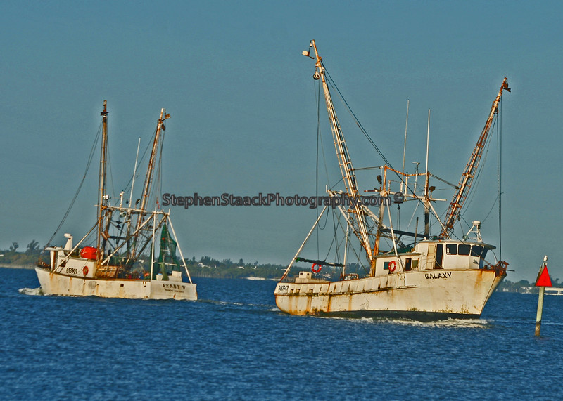 "Fishing boats  passing each other in their effort to bring in the ""catch of the day."""
