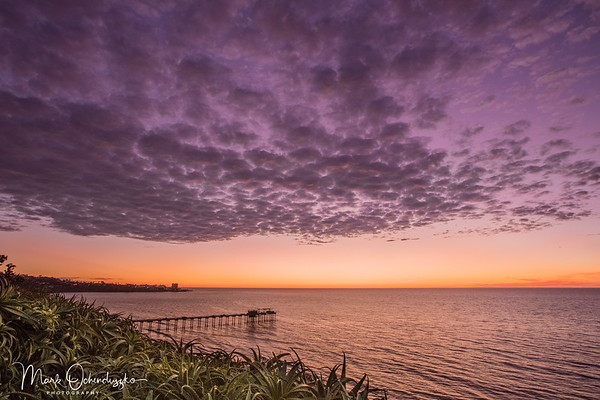 Scripps Pier In Purple