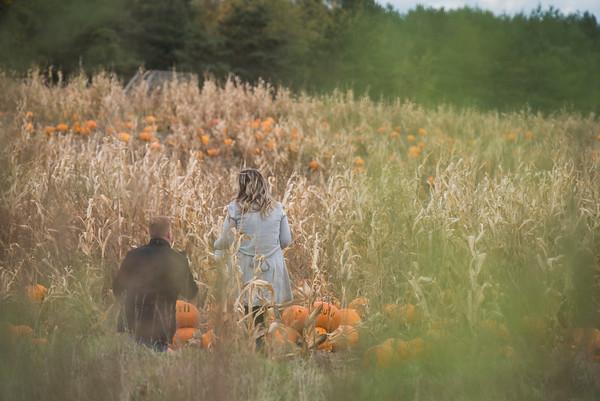 Mark Pumpkin Toronto Proposal