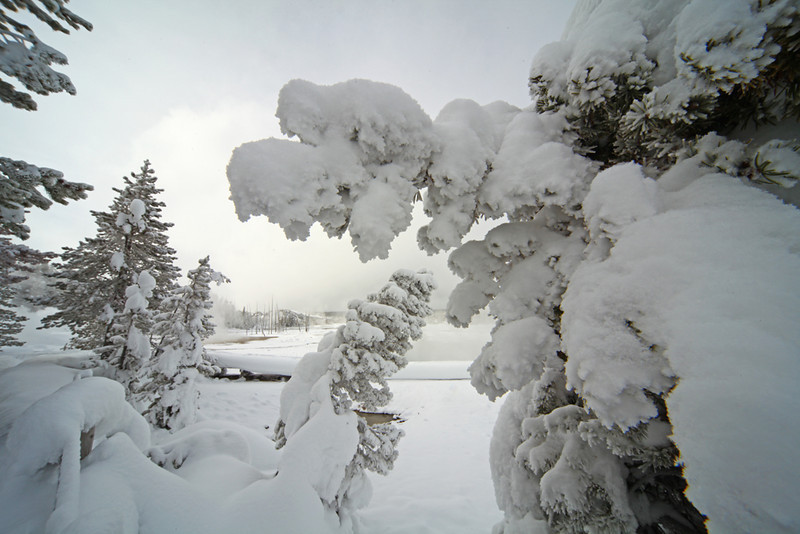 Norris Snow in Yellowstone - Yellowstone National Park, Wyoming - Mark Rasmussen