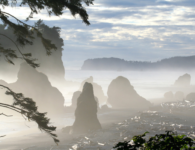 Ruby Beach fog - Olympic National Park, Washington - Mark Rasmussen