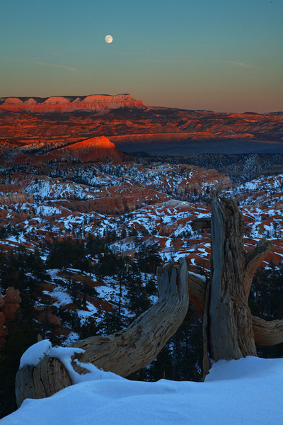 Moon rise over Bryce Canyon - Bryce National Park - Mark Rasmussen - November 2011