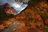 Grotto Bridge view of the Virgin River - Zion National Park - Mark Rasmussen - November 2011