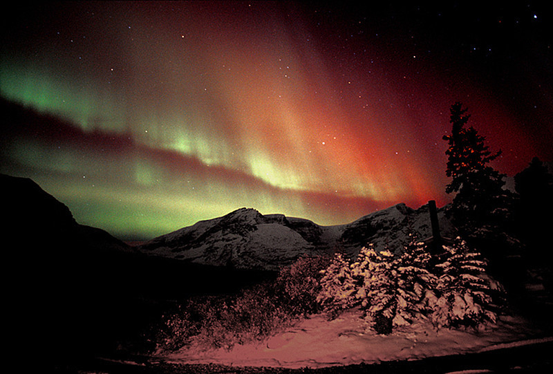 Rippling Aurora curtains - Canadian Rockies - Mark Rasmussen