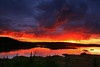 Wild sunrise - Newfoundland - Mark Rasmussen - 2008