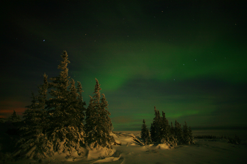Green Northern Lights and ice trees - Polar Bears & Northern Lights - Hudson Bay, Canada - Mark Rasmussen - November 2008