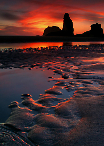 Reflecting curving Ripples - Bandon State Natural Area, Oregon - Mark Rasmussen