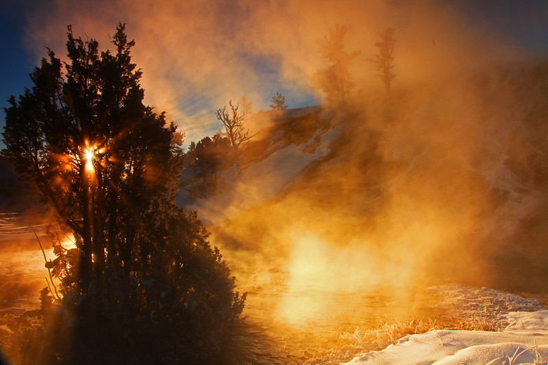 Backlit Steam at Dawn - Mammoth Hot Springs - Yellowstone National Park, Wyoming - Mark Rasmussen -