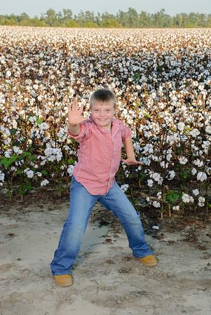 cotton1 (151)