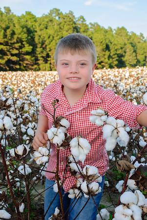 cotton1 (179)