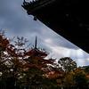 The Sky Gives Way at Tō-ji